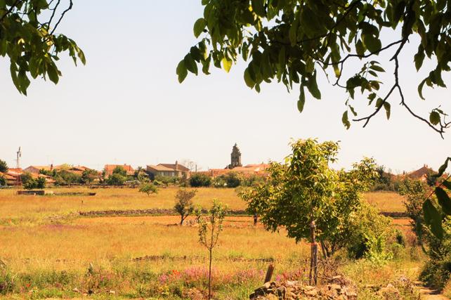 Vista general de la localidad de Gallegos del Campo.