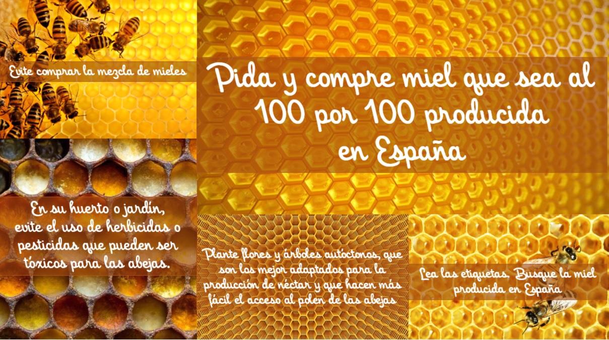18 calidad español