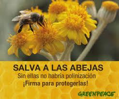 Salva a las abejas - Greenpeace