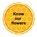 Know our flowers - Las obreras de Aliste