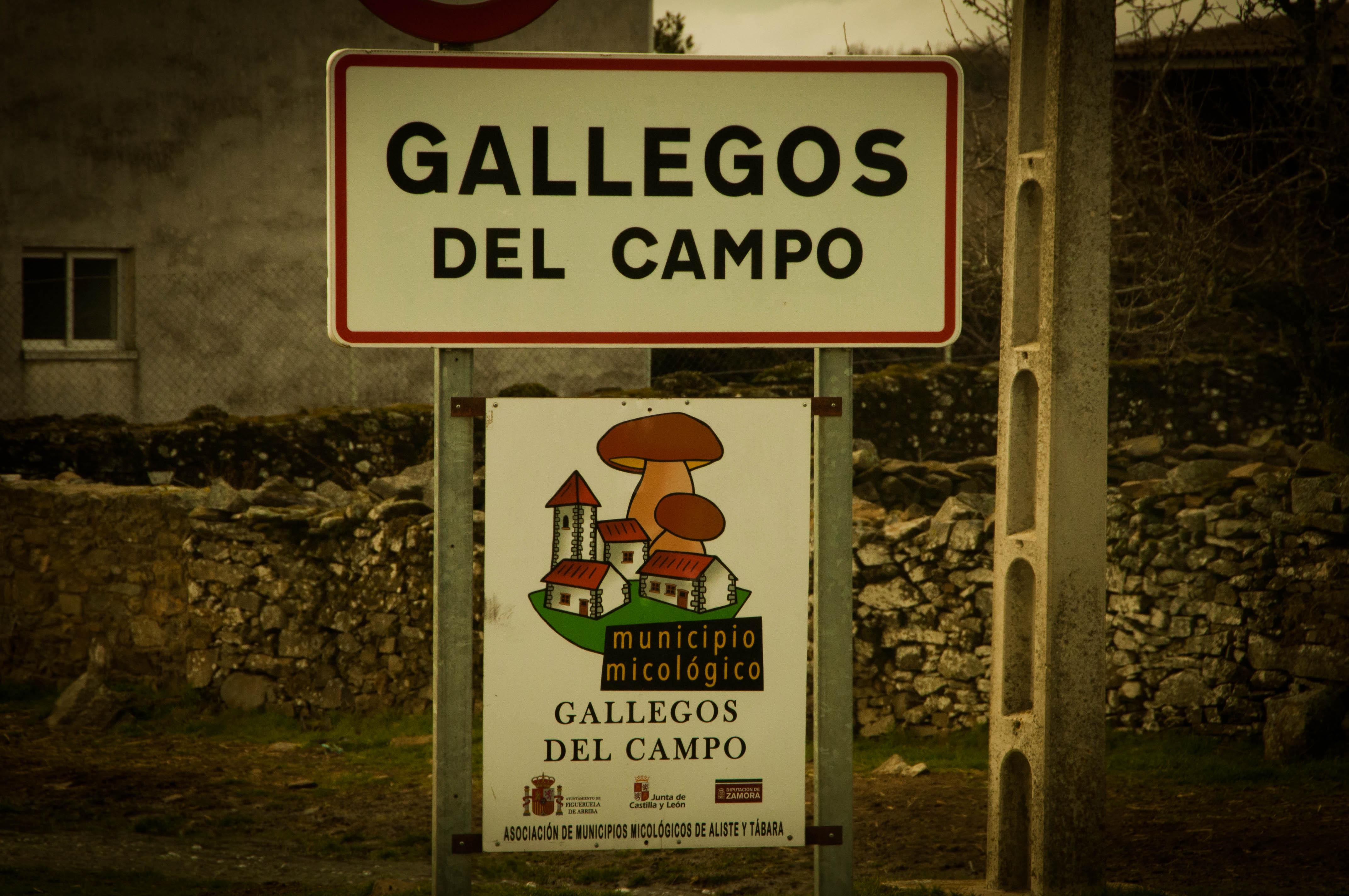 Las Obreras de Aliste Artesanos de la Miel Gallegos del Campo Zamora