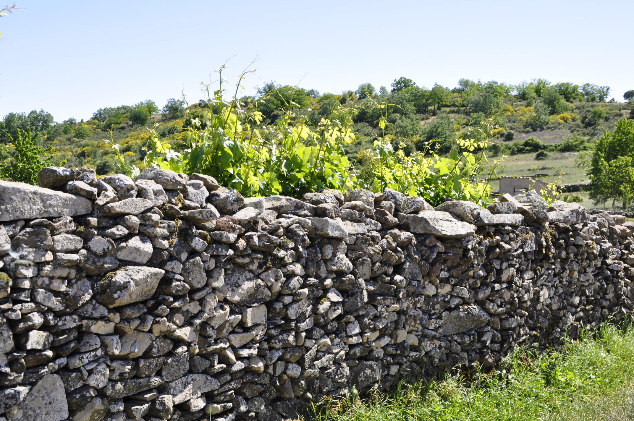 Muralla de piedra en Gallegos del Campo