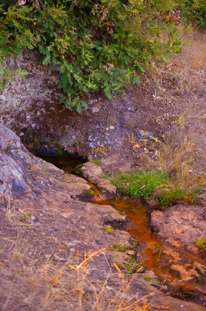 Fuente Risenda Gallegos del Campo Las Obreras de Aliste miel