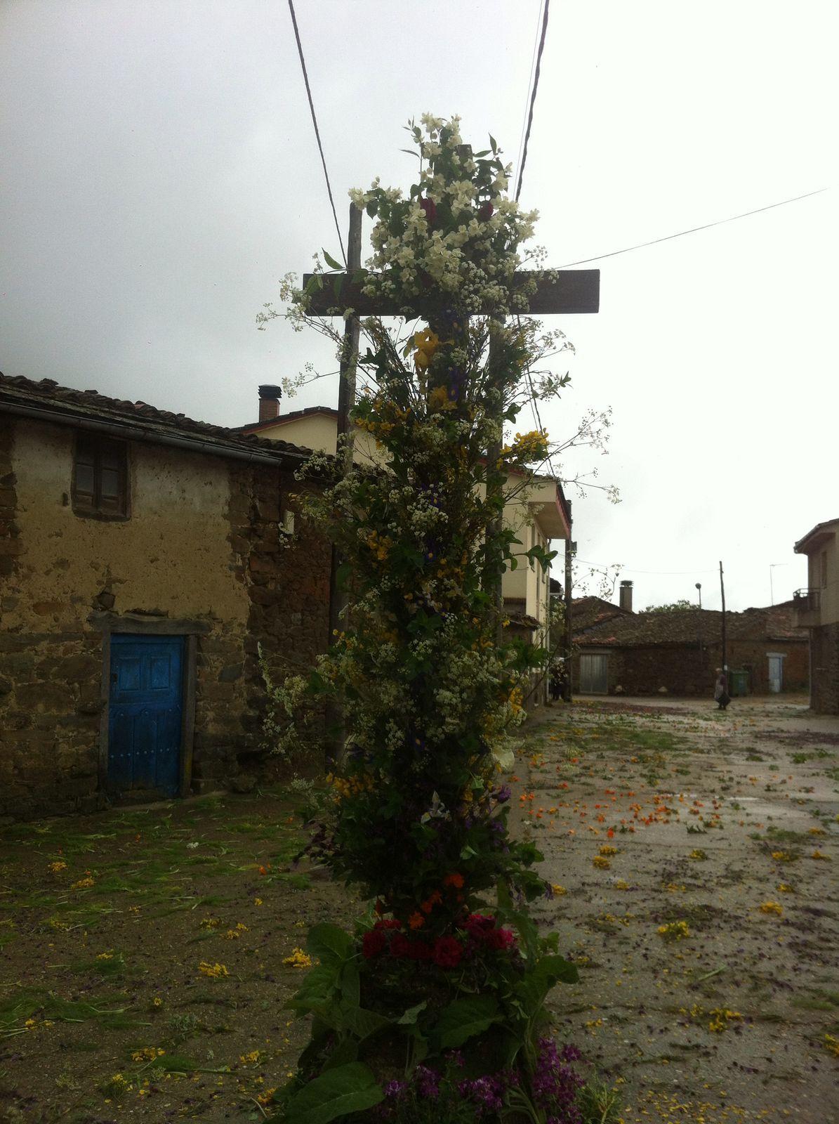 Celebración del Corpus Christi en Gallegos del Campo Las Obreras de Aliste miel