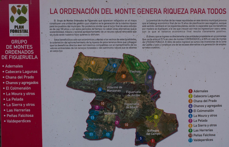 Las Obreras de Aliste CB Artesanos de la Miel Aliste Gallegos del Campo Artesanos de la Miel