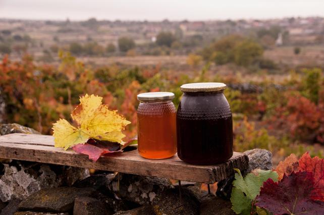 El color de nuestra miel dependiendo de la época de la castra, más clara en primavera y más oscura en otoño.