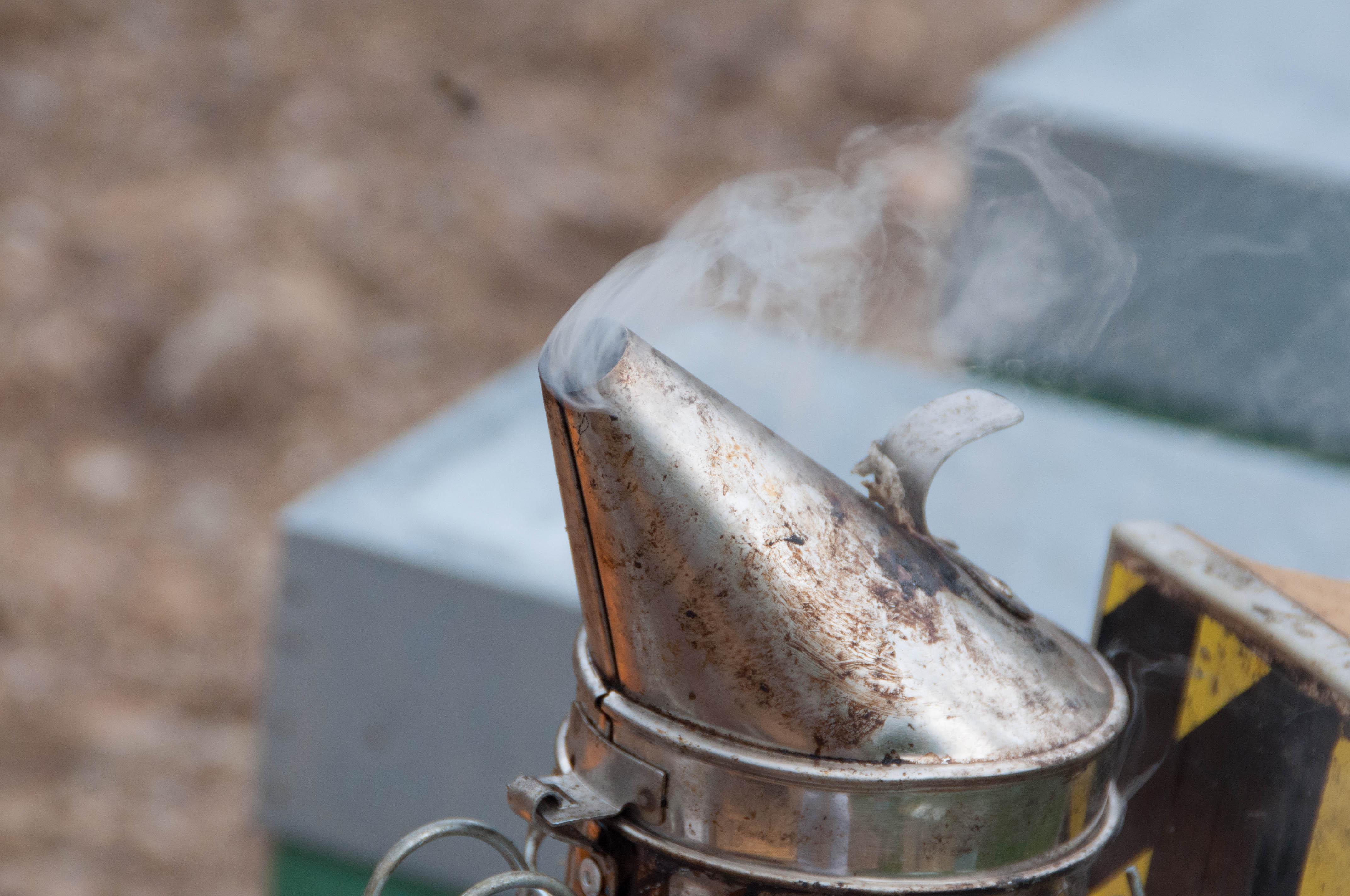 ahumador política medioambiental las obreras de aliste miel