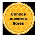 Conoce nuestras flores - Las obreras de Aliste