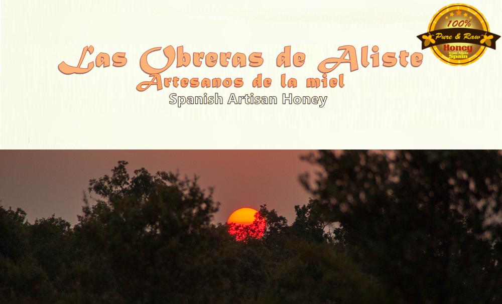Los apiarios - Las Obreras de Aliste