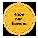 Know our flowers - Las obreras de Aliste