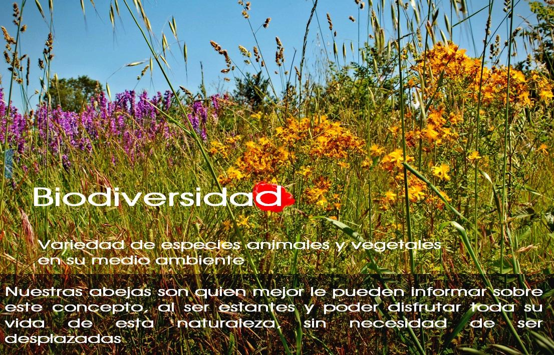 Biodiversidad Las Obreras de Aliste