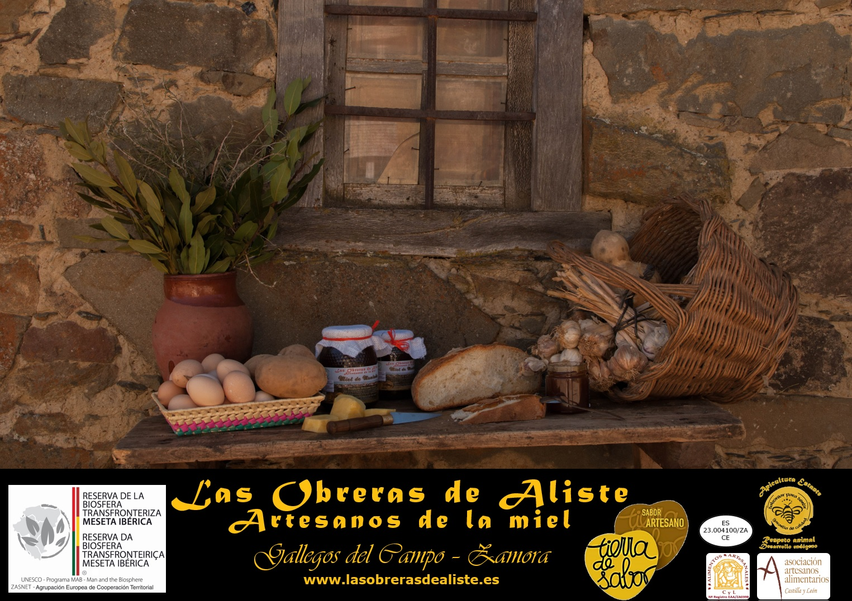 Las Obreras de Aliste Artesanos de la Miel Zamora apicultura Gallegos del Campo