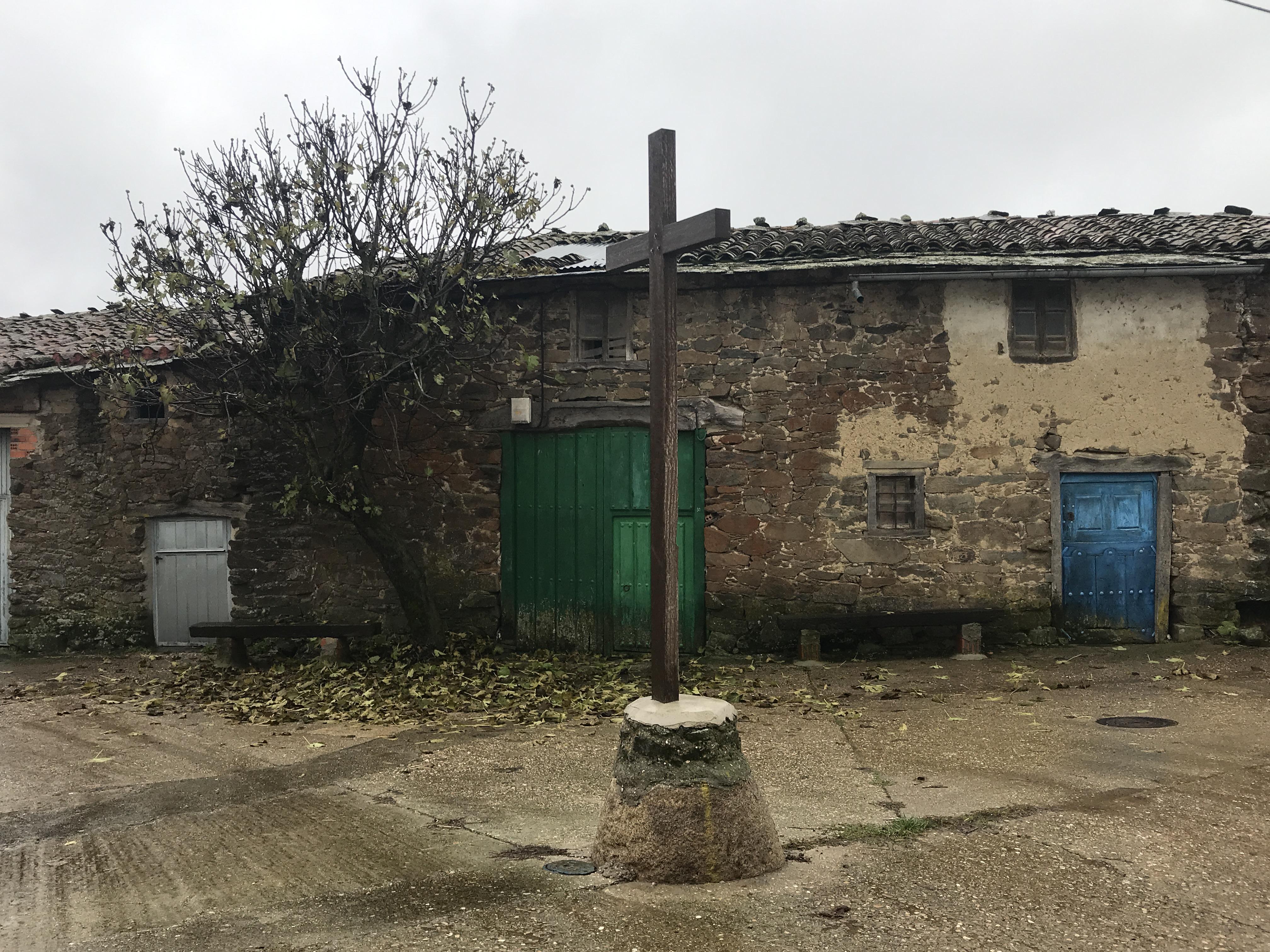 Higuera Ficus carica Las Obreras de Aliste CB Artesanos de la Miel Aliste Gallegos del Campo Artesanos de la Miel